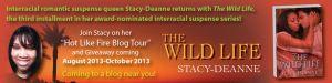 Stacy_Hot_Like_Fire_Blog_Tour